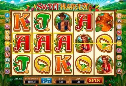 Комбинация символов в игровом автомате Sweet Harvest