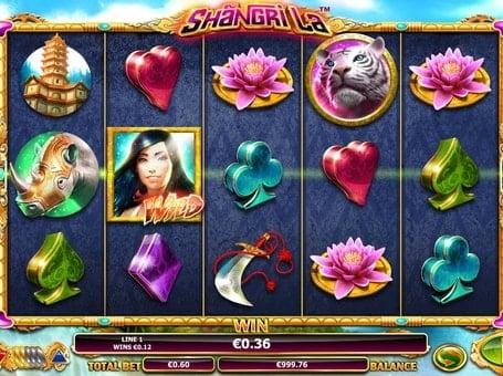 Выигрышная комбинация с диким символом в Shangri La