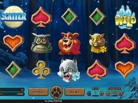 Scatter и Wild символы в онлайн слоте Wolf Cup
